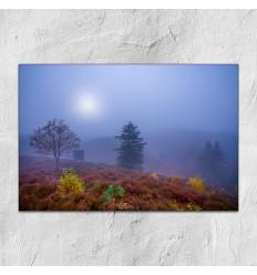 Karim Qubadi - Natur5 30x45