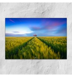 Karim Qubadi - Natur8 30x45